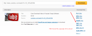 Format File Video Youtube
